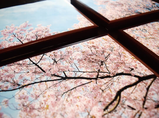 桜のファブリックパネル紙製01