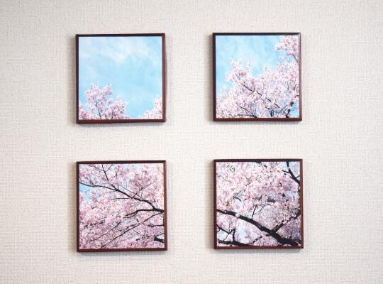 桜のファブリックパネル紙製03