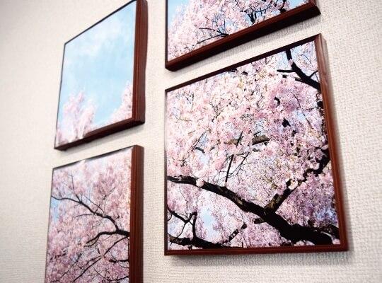 桜のファブリックパネル紙製04