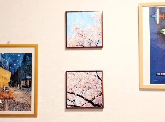 桜のファブリックパネル紙製06